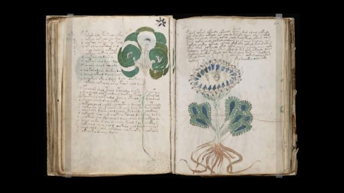 Voynich Manuskript entschlüsselt