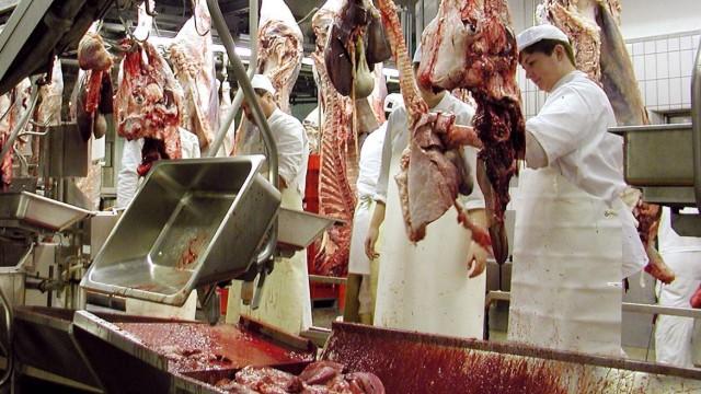 Fleischer an der Rinderverarbeitungsstraße