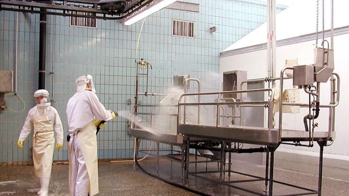Großreinigung im Münchener Schlachthof nach BSE-Verdacht