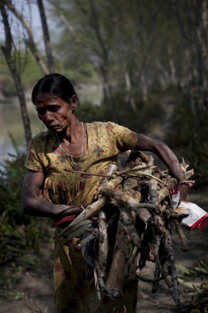 Sundarban's Ecosystem And Residents Threatened By Rampal Power Plant