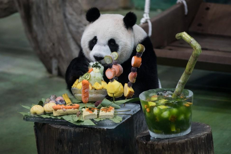 (200706) -- TAIPEI, July 6, 2020 -- Giant panda Yuan Zai enjoys its special birthday cake at the Taipei Zoo in Taipei,