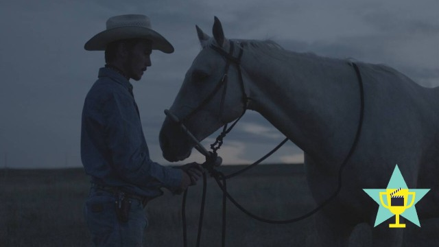 RELEASE DATE April 13 2018 TITLE The Rider STUDIO DIRECTOR Chloe Zhao PLOT After suffering a n