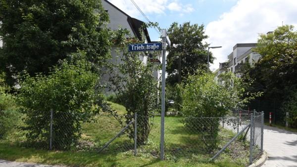 Triebstraße in München