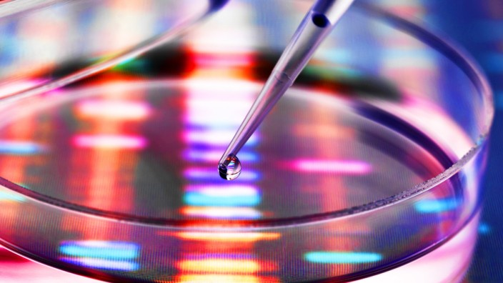 Sample of DNA being pipetted into a petri dish over genetic results property released PUBLICATIONxIN