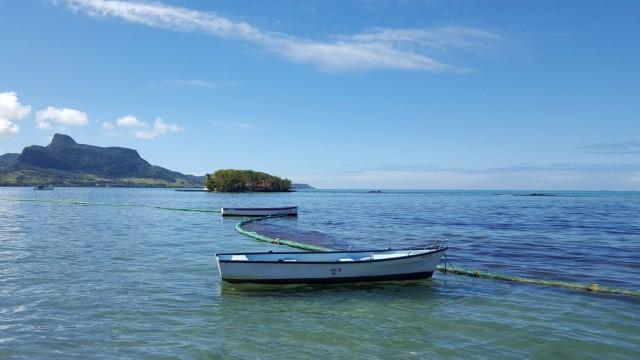 Ölkatastrophe vor Mauritius: undefined
