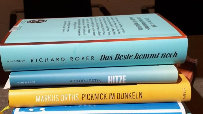 Sommerbücher Romane für den Urlaub Lesetipps von Ulrike Wolz aus Vaterstetten