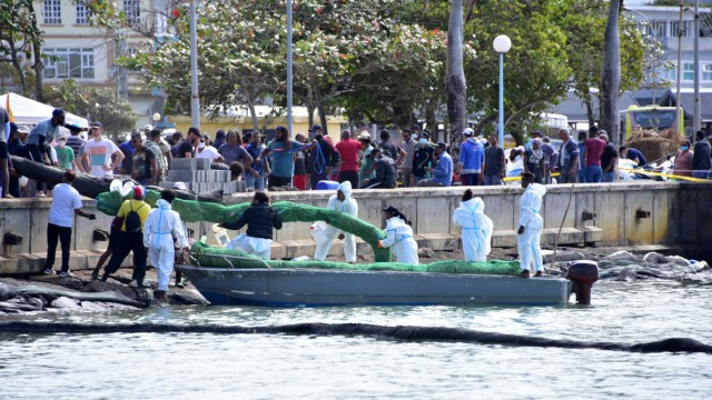 Volunteers hold a floating boom of hair and sugarcane leaves near the leaked oil from the bulk carrier ship MV Wakashio, belonging to a Japanese company but Panamanian-flagged, that ran aground on a reef, at Riviere des Creoles
