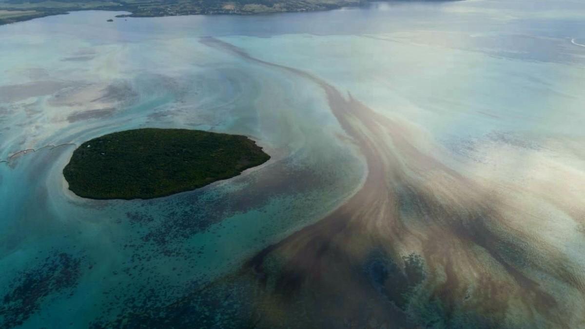 Mauritius: Mit Haaren gegen die Ölpest