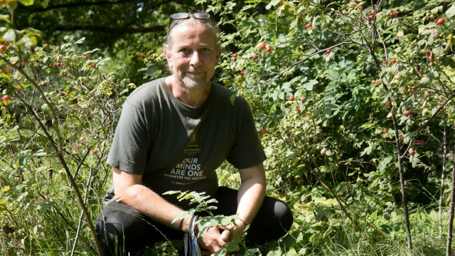Markus Baur, Schlangenexperte, fotografiert im Englischen Garten zwischen Hagebutten-Büschen