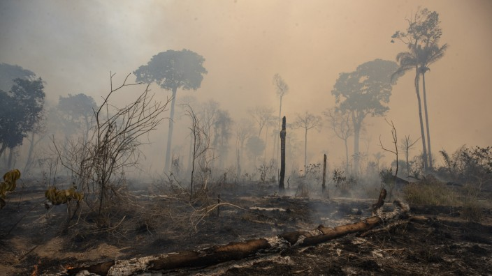 Brände im Amazonas-Gebiet in Brasilien