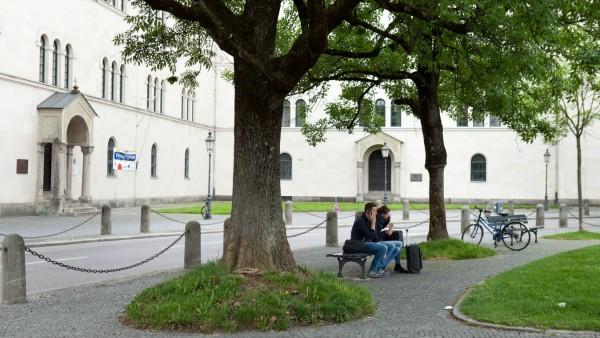 Bäume in München, 2016