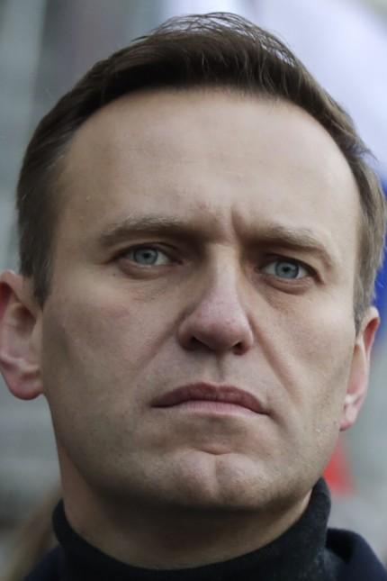 Nawalny Entlassung Interview