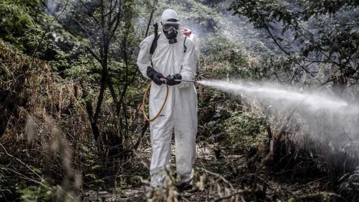 Pestizide: Insgesamt genehmigten EU-Staaten den Export von 81 615 Tonnen Pestiziden, oft an Entwicklungs- und Schwellenländer wie Kenia.
