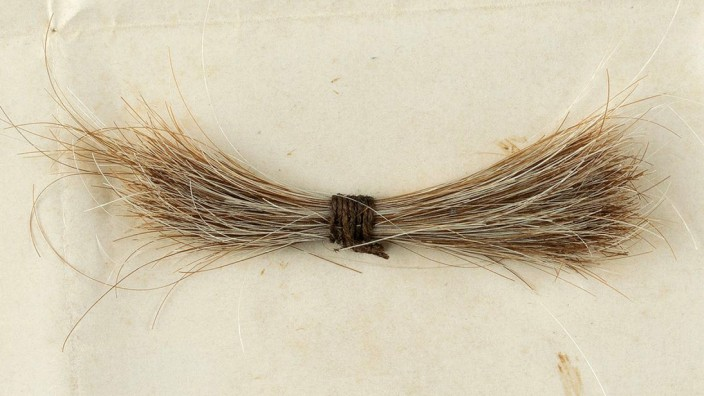 Stilkritik: Diese Haarlocke soll US-Präsident Abraham Lincoln nach dem tödlichen Attentat im Jahr 1865 abgeschnitten worden sein. Sie wurde jetzt versteigert.