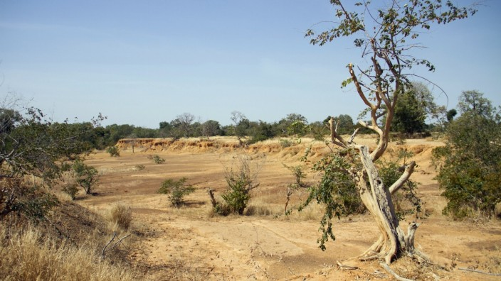 FILE PHOTO: Parched land is pictured around the Lake Wegnia, in Sahel region of Koulikoro