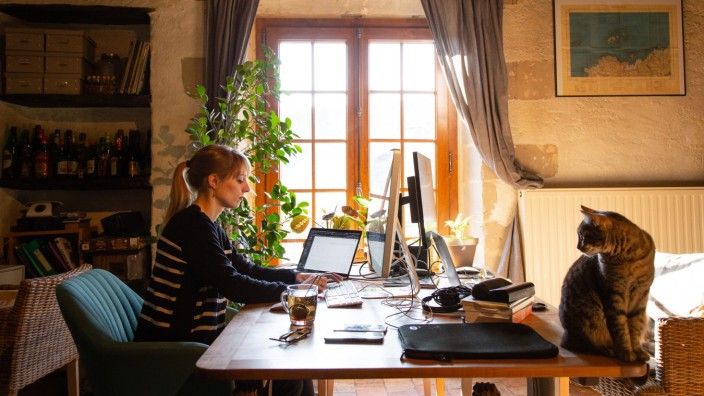 FRANCE - ANGERS SOCIAL DISTANCING IN ANGERS A woman is installed in her living room and works remotely (under the eyes o