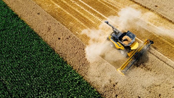 Erfurt , 24.07.2020 , Weizenernte auf einem Feld bei Frienstedt Im Bild: Weizenernte bei der Ernte mit einem Mähdrescher
