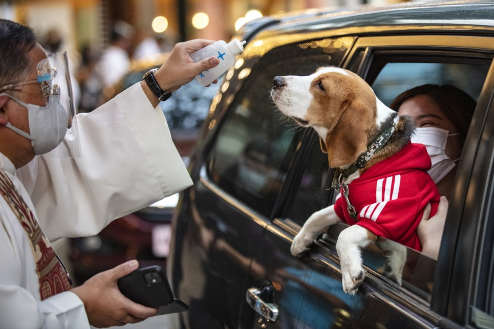 Pets Blessed By Priest At Philippines Drive-In