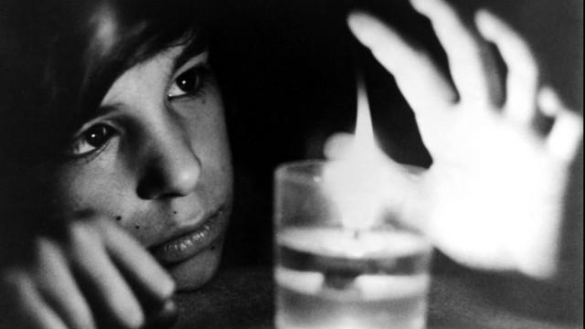Der Wolfsjunge - François Truffaut