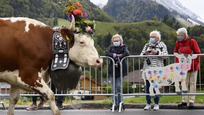 Coronavirus in der Schweiz: Almabtrieb während der Corona-Pandemie