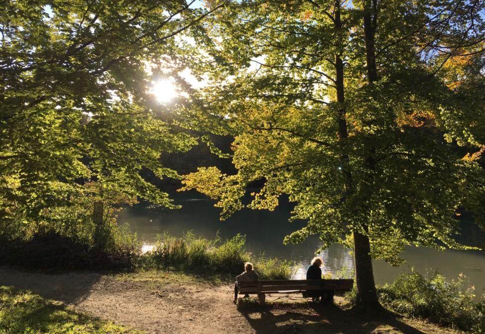 Herbstfoto_Richter