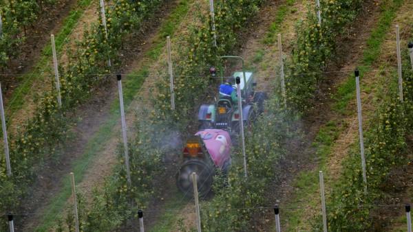 Chemische Schaedlingsbekaempfung im Intensiv Obstanbau Apfel Spalierobst Italien Suedtirol chemic
