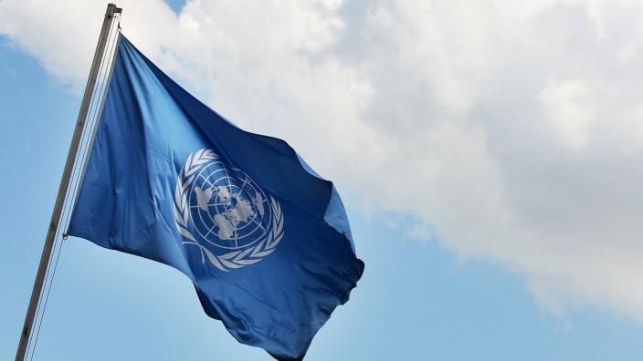 UN, WTO und EU:Der Weg zum Traumjob auf internationalem Parkett