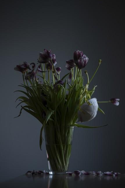 Coronavirus, mask and flowers ; Andrew Kravchenko (Ukraine) No smell no tase, Ausstellung Pasinger Fabrik Shutdown