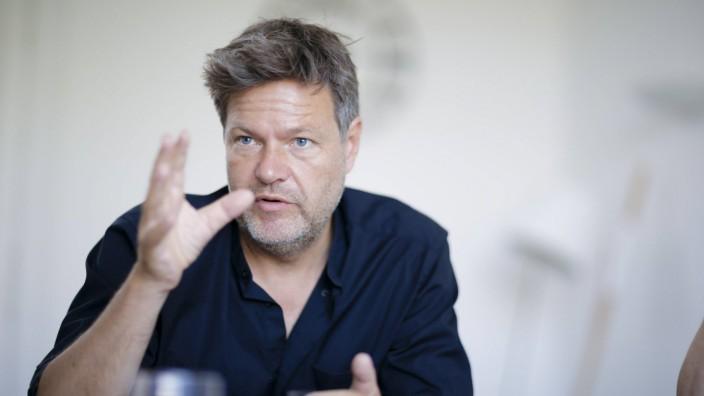 Robert Habeck Parteivorsitzender von Buendnis 90 Die Gruenen gestikuliert waehrend eines Interview
