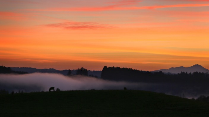 Morgenstimmung im Voralpenland