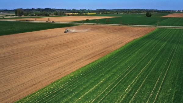 Bayern, Mais-Aussaat in Rammingen 24.04.2020, Rammingen bei Bad Wörishofen, Ein Landwirt pflügt seinen Acker um. 24.04.2