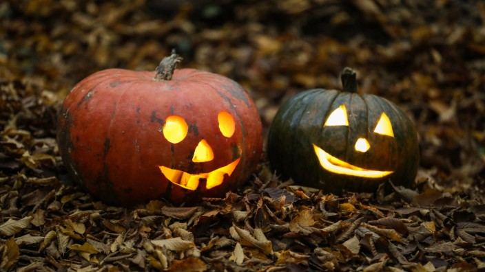 Haloween in love - Zagreb, Croatia Two carved pumpkins placed in the forrest before Halloween in Zagreb, Croatia on 30.