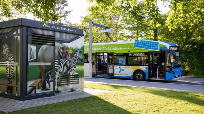 Bus der Zukunft: Schnell-Ladepunkt an der Endstation Zoo: Der Elektrobus klappt den Pantografen aus und tankt Ökostrom für den Rückweg durch Münster.