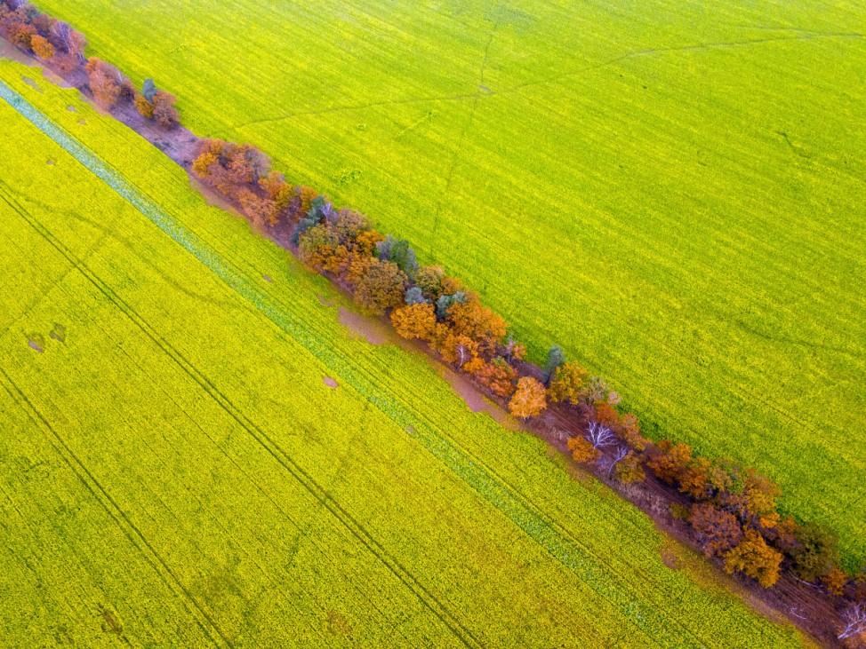 Herbst in Norddeutschland