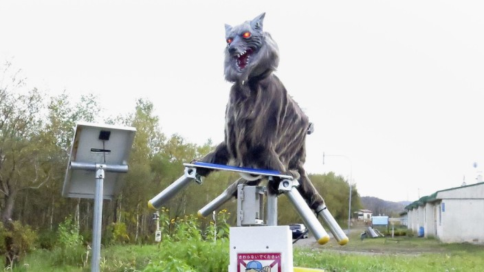 A robot called Monster Wolf  is installed in an effort to scare away bears that have become an increasingly dangerous nuisance in the countryside, in Takikawa
