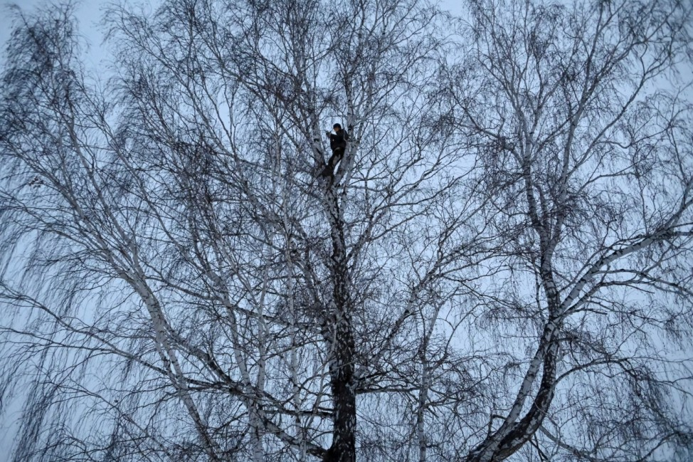 Russian student and blogger climbs a tree for better celular internet connection in his remote Siberian village of Stankevichi