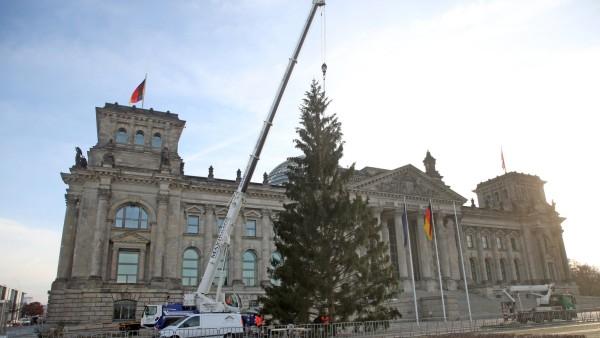 Weihnachtsbaum vor dem Reichstagsgebäude