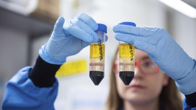 Corona-Impfstoff: Forschung im Labor des Jenner-Instituts der Oxford-Universität