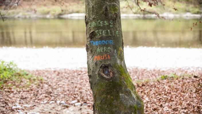 Grünwald, an der Isar, ãUnsere StelleÒ, steht auf dem Baum und erinnert an laue Sommernächte