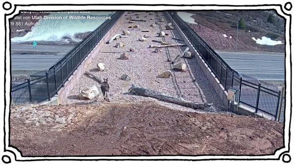 Utah Wildtierbrücke Screenshot