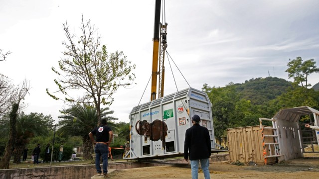 Pakistan's lonely elephant heads for Cambodia, in Islamabad