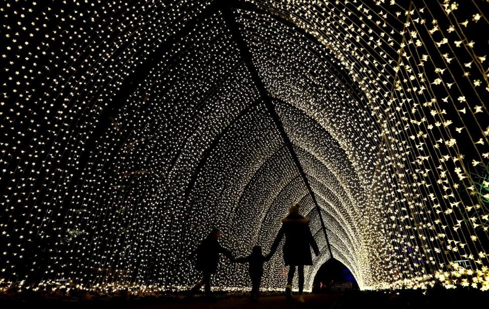 BESTPIX - Christmas At Kew Gardens - Press Evening