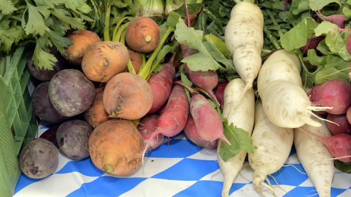 Regionales Gemüse in Bayern, 2020