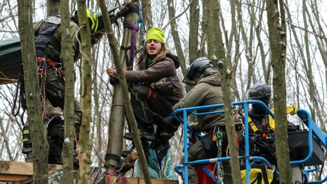 Baumhaus-Camps im Dannenröder Forst werden geräumt