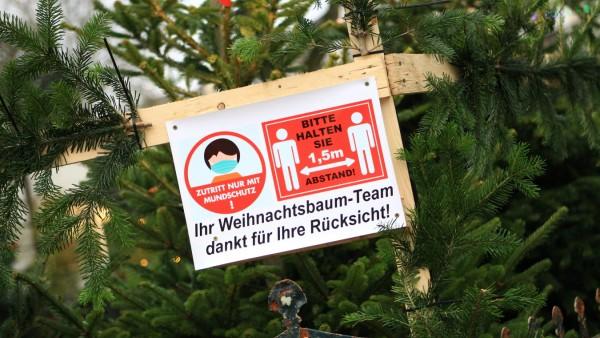 Symbolbild AHA-Regeln in der Coronavirus-Pandemie. beim Weihnachtsbaum-Markt-Verkauf. Harvestehude Hamburg *** Symbol i