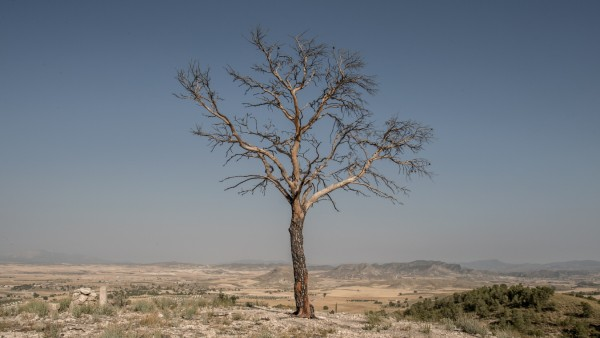 Climate Change Warnings As Southern Spain's Deserts Expand Due To Drought