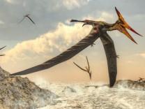 Paläontologie: Geflügelte Reptilien