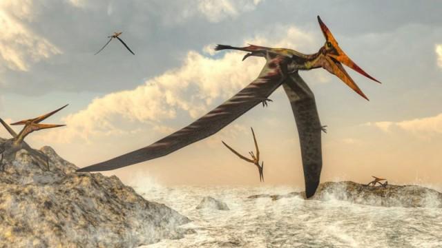 Studie identifiziert die rätselhaften Vorläufer der Flugsaurier; Flugsaurier