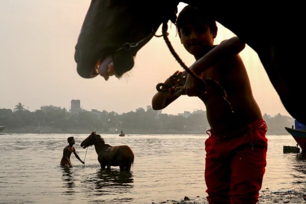 Man bathes a horse in the Buriganga river in Dhaka, Bangladesh