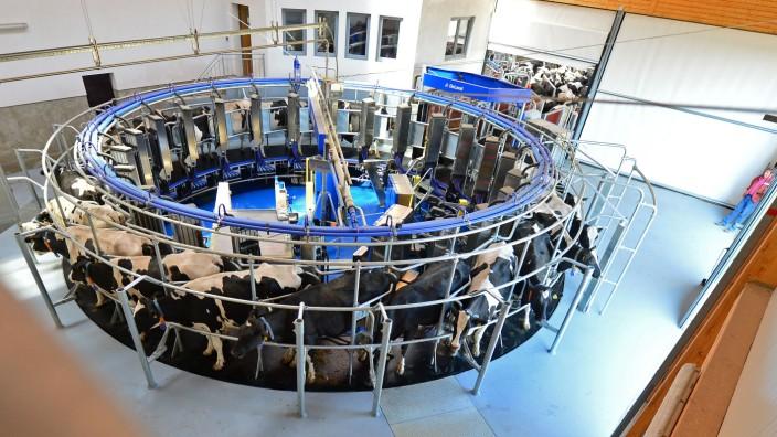 Hochmoderne Melkmaschine für Kühe